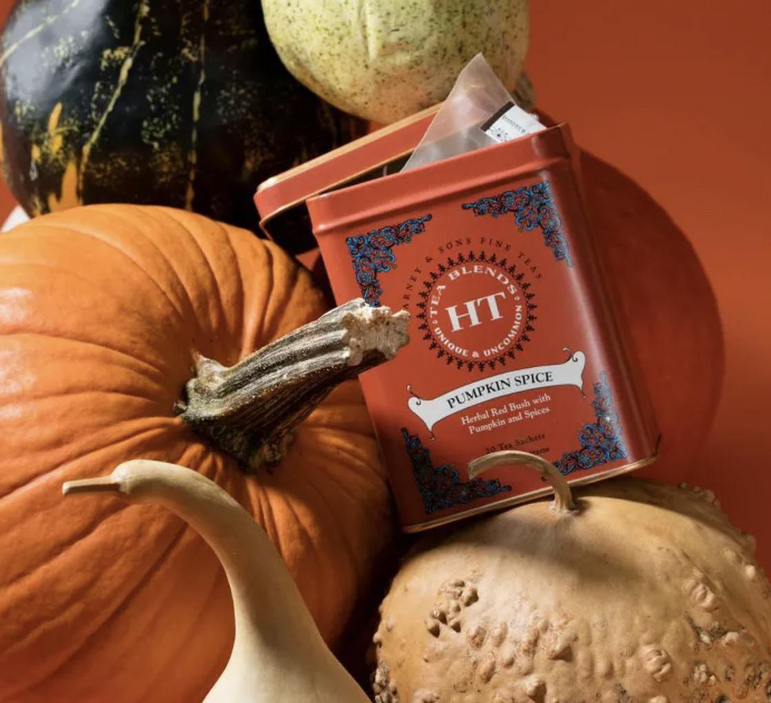 Harney & Sons Pumpkin Spice Herbal Tea